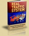 Real Traffic System